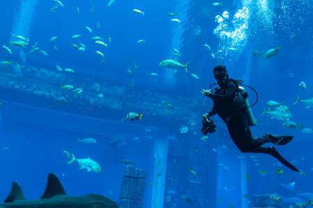 DUBAI, UAE - APRIL 5, 2020: Scuba diver in Lost chambers - Large aquarium in Hotel Atlantis in Dubai, United Arab Emirates