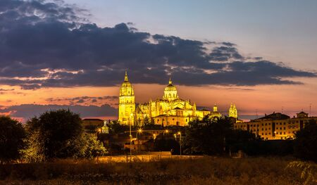 Panorama of Cathedral in Salamanca in a beautiful summer night, Spain Stock Photo