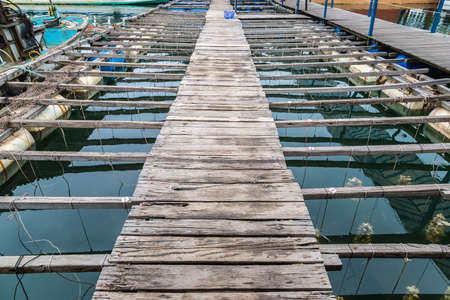 Pearl farm in Halong bay, Vietnam in a summer day
