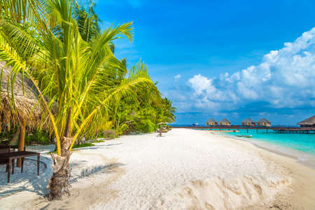 Tropical beach in the Maldives at summer day