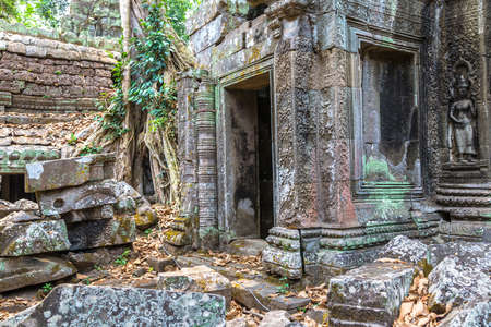 Ta Prohm temple ruins is Khmer ancient temple in complex Angkor Wat in Siem Reap, Cambodia in a summer day