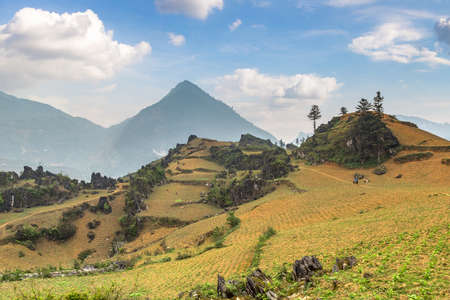 Panoramic view of Beautiful landscape in Sapa, Lao Cai, Vietnam in a summer day