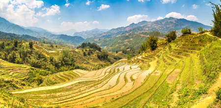 Panorama of Terraced rice field in Sapa, Lao Cai, Vietnam in a summer day