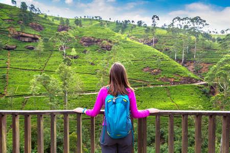 Woman traveler at the Tea plantations in Nuwara Eliya, Sri Lanka