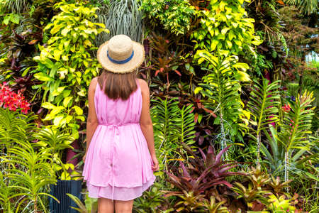 Woman traveler wearing pink dress and straw hat against natural tropical background