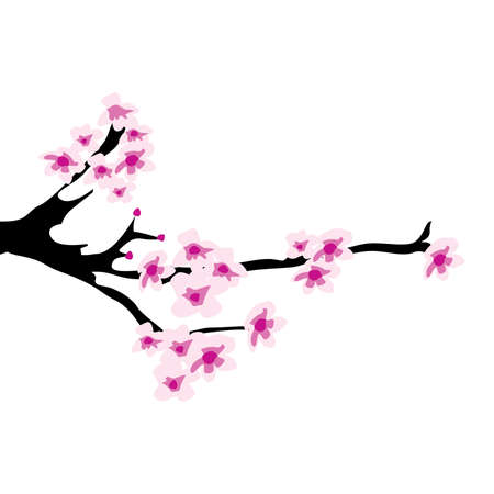cherry tree blossom  イラスト・ベクター素材