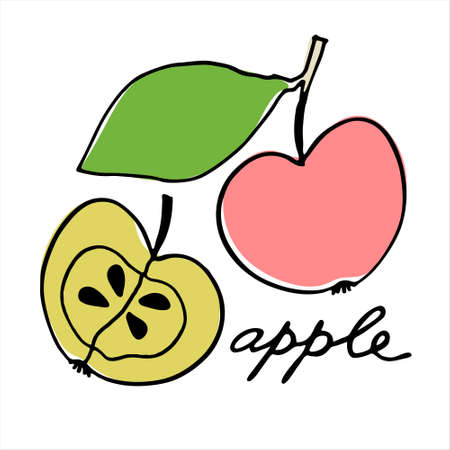 Whole apple and the half of it. Colorful vector illustration with hand lettering. Perfect for price tag, teaching aid, illustrated summary, other design projects Ilustracja