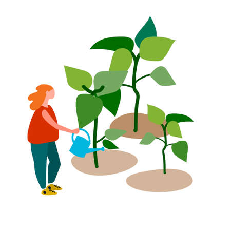 Young woman watering seedlings vector illustration in flat style. Spring gardening work concept