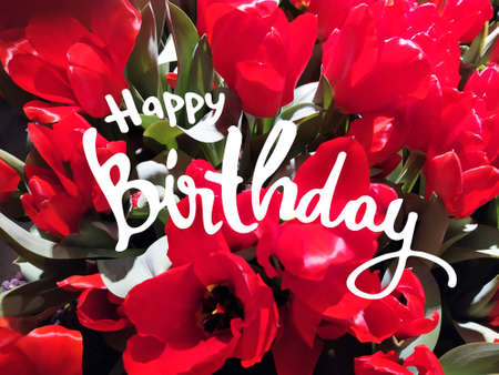 Happy Birthday horizontal greeting card. Photo of wine-colored tulips and hand-lettered greeting phrase. 3D illustration