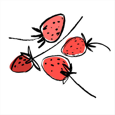 Strawberries. Hand drawn vector illustration for teaching aid, price tag, fruit stores, restaurants and farm markets promotion. Isolated design element Ilustração