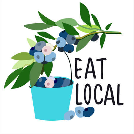 Eat local concept. Harvesting concept. Pick-your-own concept. Blueberries and bucket  illustration in abstract flat style. Hand lettering Ilustração