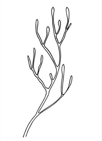 Moss branch line art. Hand drawn vector illustration for decoration purposes. Isolated on white