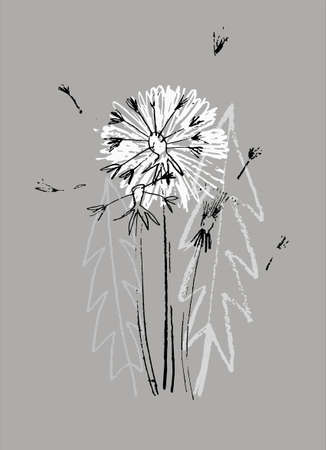 Decor printable art. Hand drawn monochrome vector illustration of dandelion flower on gray background. Design for prints, posters, cards, textile