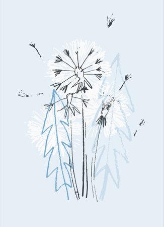 Decor printable art. Hand drawn vector illustration of dandelion flower on light blue background.