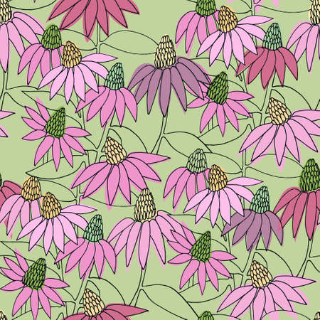 Seamless colorful pattern with hand drawn Echinacea flowers for surface design and other design projects