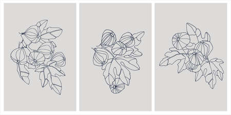 Decor printable art. Set of hand drawn vector illustrations of fig fruits on branches