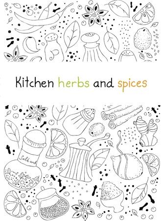 spezie: Illustrazione disegnata a mano di varie erbe aromatiche e spezie doodles elementi isolati su sfondo bianco