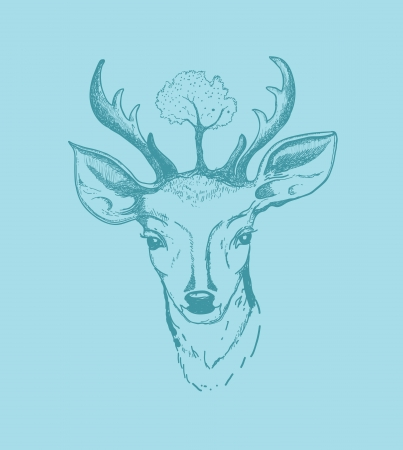 Hand drawn vector illustration of deer  Isolated on turquoise background Vector