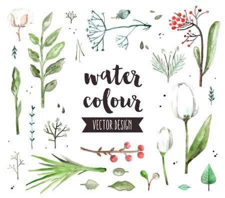 春花の花、様々 なハーブ植物のプレミアム品質の水彩アイコンのセットします。テキスト文字で装飾。フラット レイアウト水彩オブジェクトを白い