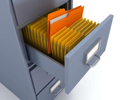 neat: Bookshelf for documents . 3d render
