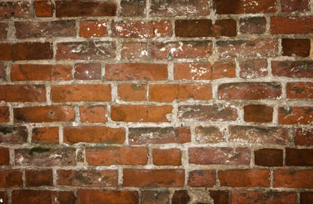high resolution brick texture photo