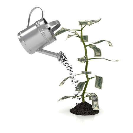 白い背景の上のお金の植物。コンピューター生成画像