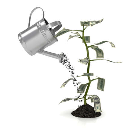 pot of money: Money plant over white background. computer generated image