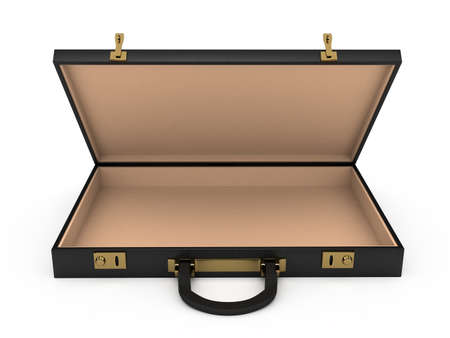 business briefcase: Open black case over white background. computer generated image