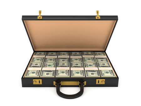 earn money: 3d open case with money. computer generated image Stock Photo
