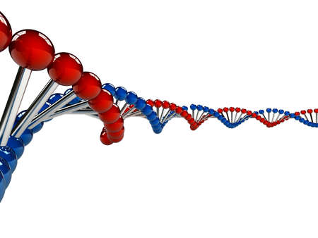 DNA Strands over white background  computer generated image Stock Photo - 12639792