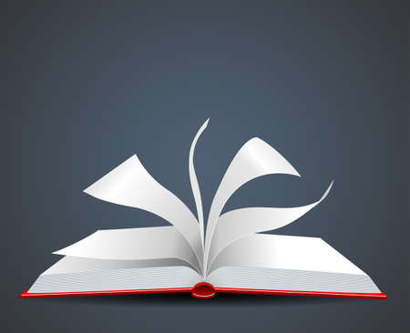 open book icon:  Illustration of an open Book Illustration