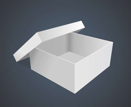 empty paper box illustration Vector