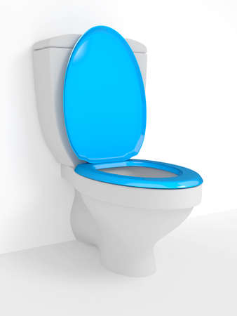 toilet bowl: Toilet bowl, with the closed seat