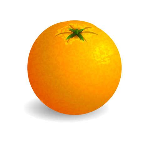 photo realism: Bright orange on white background