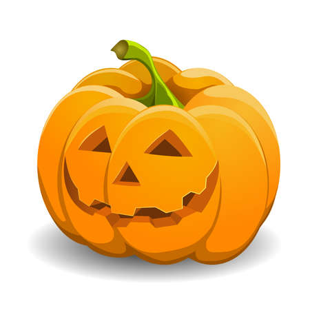 Pumpkin isolated on white. vector illustration. Vector