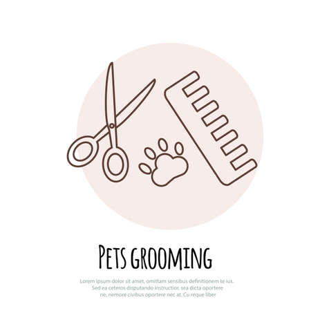 scissors comb: Scissors, comb for cutting and grooming pets