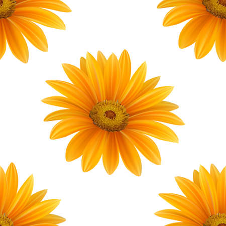 Hand drawn vector realistic seamless pattern of Gerbera Daisy flower