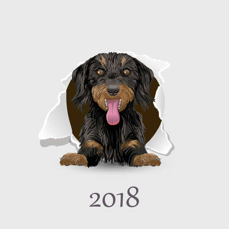 Flyer with the numbers and a happy dog symbol 2018 year on Chinese calendar. Illustration