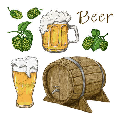 Sketches of hop plant, wood barrel and beer mugs