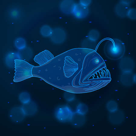 Hand drawn sketch Angler Fish, marine animals - Stock Vector illustration