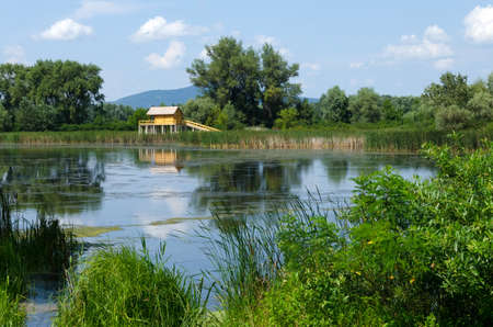 backwater: summer landscape in Hungary - the stilt house, backwater, trees, reeds, blue sky and clouds