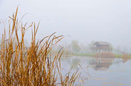 stilt house: foggy autumn landscape with a lake, a stilt house and reeds Stock Photo