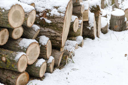stack of firewood: snow covered stack of firewood at winter