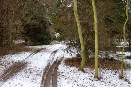 winterly: rut on the snow covered ground in the forest at winter Stock Photo