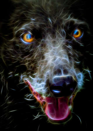 glowing skin: fractal portrait of a dog Stock Photo