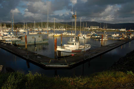 fishing boats docked in Crescent City California harbor