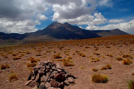 altiplano: altiplano