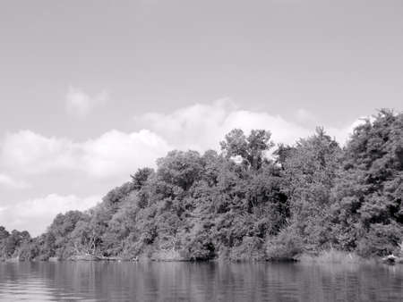 chester: Chester River in B&W Stock Photo