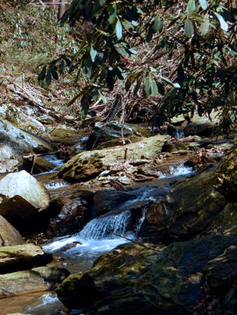 crick: Small Waterfalls at Tacquan Glen Preserve