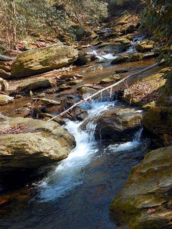 conservacion del agua: Creek at Tacquan Glen Preserve
